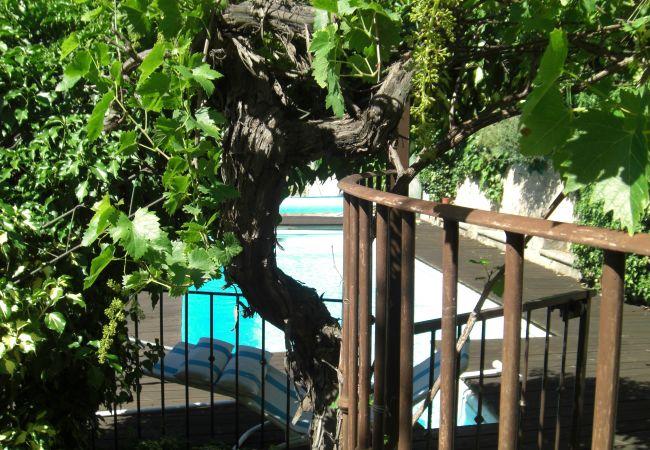 Maison à Cotignac - LES RESTANQUES : PISCINE PRIVEE - VUE DOMINANTE